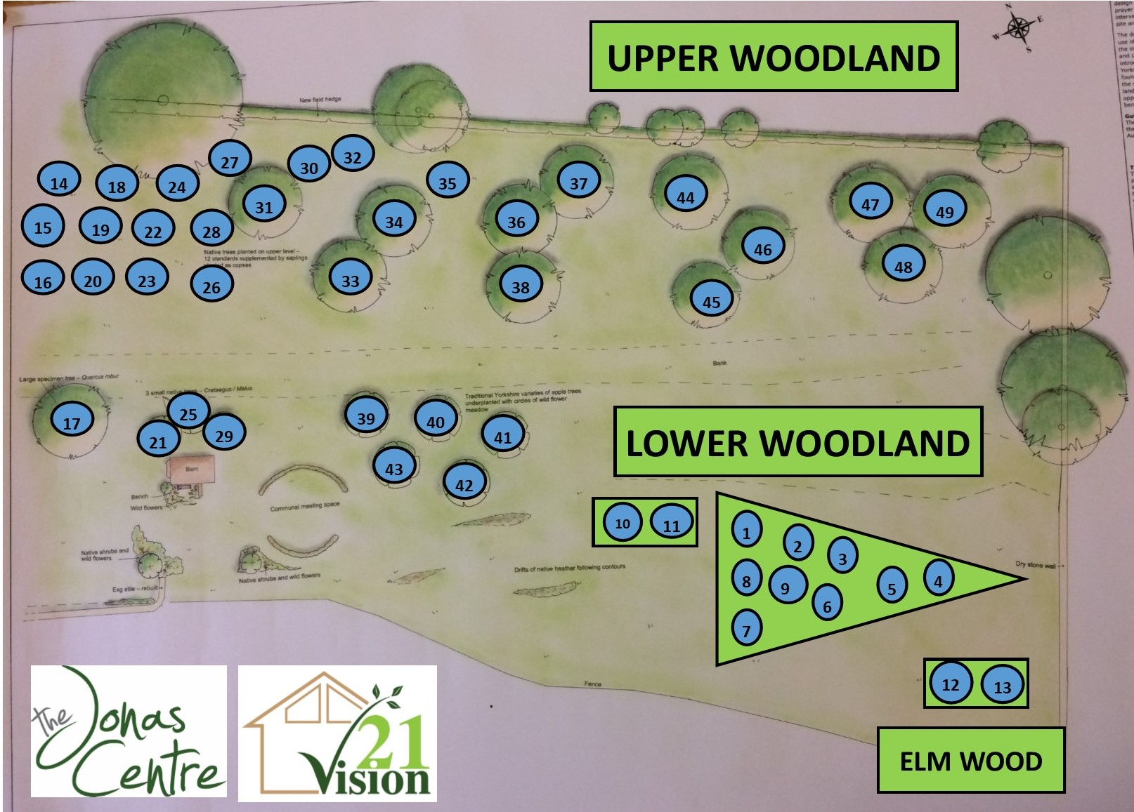 the jonas centre memorial woodland project 2019